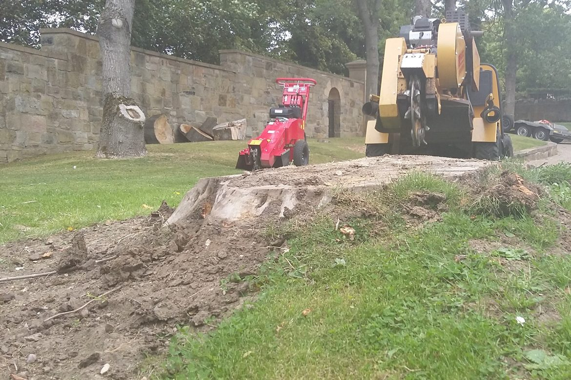 Both Stump Grinders required on this Job!
